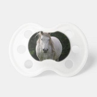 Cute pony photograph dummy