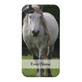 Cute pony photograph iPhone 4/4S cases