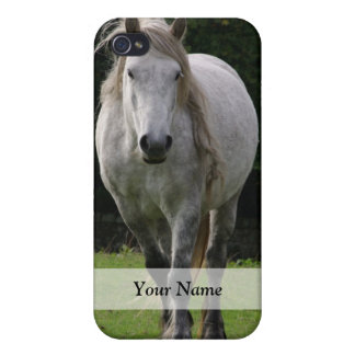 Cute pony photograph iPhone 4 cases