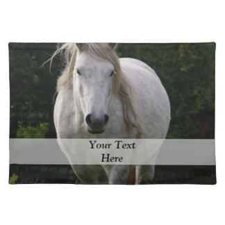 Cute pony photograph placemat