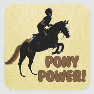 Cute Pony Power Equestrian Stickers