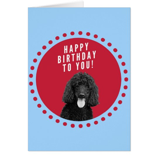 Cute Poodle Dog Happy Birthday Red Dots Circle