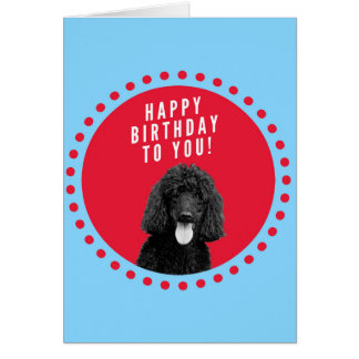 Cute Poodle Dog Happy Birthday Red Dots Circle Greeting Card