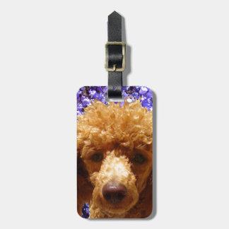 Cute Poodle Luggage Tag
