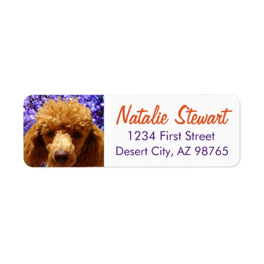Cute Poodle Return Address Label