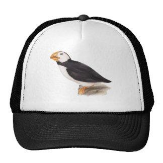 Cute Puffin Birds Illustration Cap