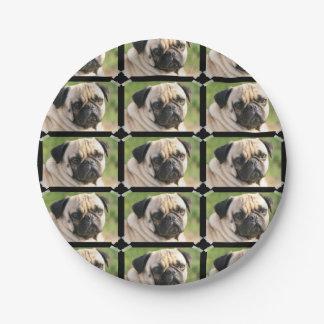 Cute Pug 7 Inch Paper Plate