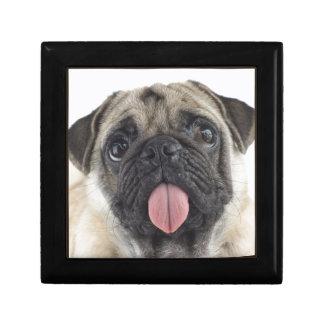 Cute Pug Gift Box