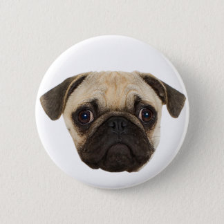 Cute Pug Gifts 6 Cm Round Badge