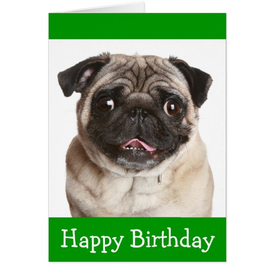 Cute Pug Puppy Dog Happy Birthday Greeting Card