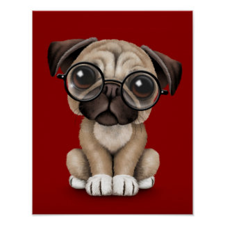 Cute Pug Puppy Dog Wearing Reading Glasses, Red Poster