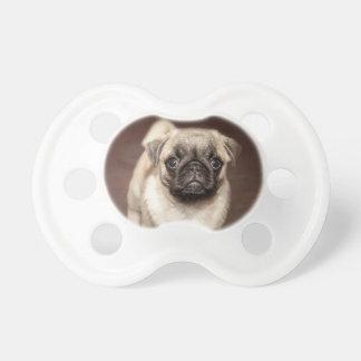 Cute Pug Puppy Dummy