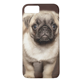 Cute Pug Puppy Iphone 7 Case