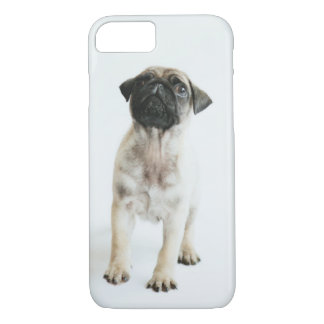 Cute Pug Puppy iPhone 8/7 Case