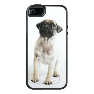 Cute Pug Puppy OtterBox iPhone 5/5s/SE Case