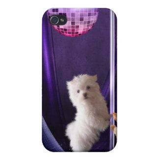 Cute Puppie Dog Disco Dance iPhone 4 Cover