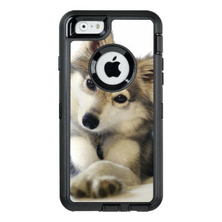 Cute Puppy case