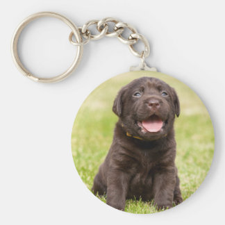 Cute puppy dog basic round button key ring