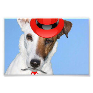 Cute puppy dog red fashion funy moustache tie hat art photo