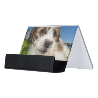 Puppy business card holders cases zazzlecouk for Cute business card holders for desk