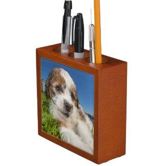 Cute puppy dog (Shitzu) Desk Organiser