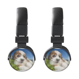 Cute puppy dog (Shitzu) Headphones