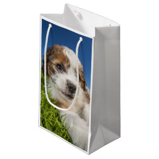 Cute puppy dog (Shitzu) Small Gift Bag