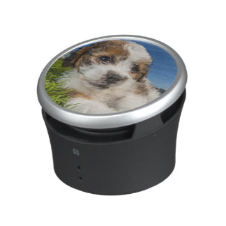 Cute puppy dog (Shitzu) Speaker