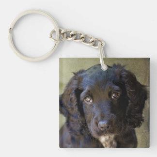 Cute puppy key chain keychains
