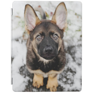 Cute Puppy Looking Up iPad Cover