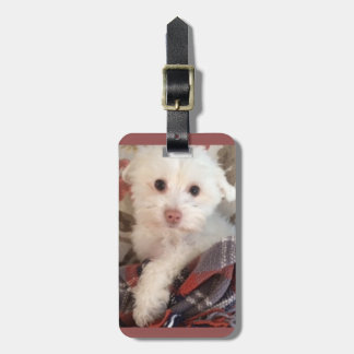 Cute puppy luggage tag