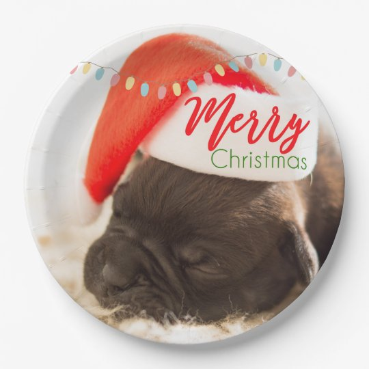 Cute Puppy Pug in a Red Santa Hat
