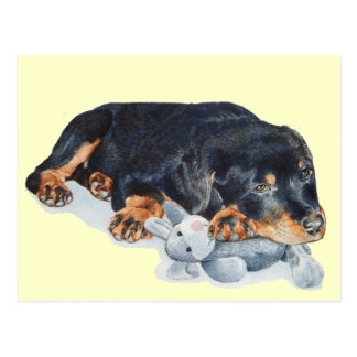 cute puppy rottweiler with teddy bear post card