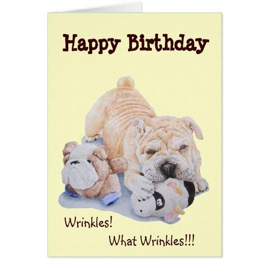 Cute puppy shar pei dog and teddy funny
