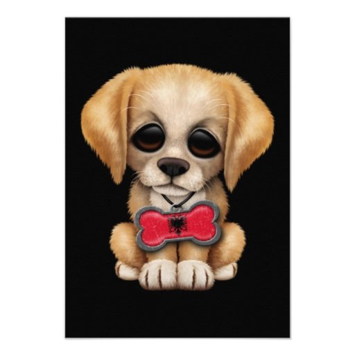 Cute Puppy with Albanian Flag Pet Tag, Black Custom Invites
