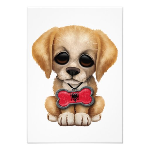 Cute Puppy with Albanian Flag Pet Tag Invitation