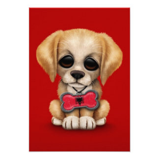Cute Puppy with Albanian Flag Pet Tag, Red Personalized Announcement