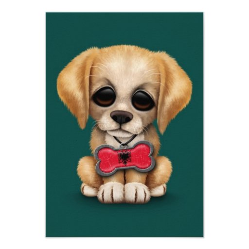 Cute Puppy with Albanian Flag Pet Tag, teal blue Invites