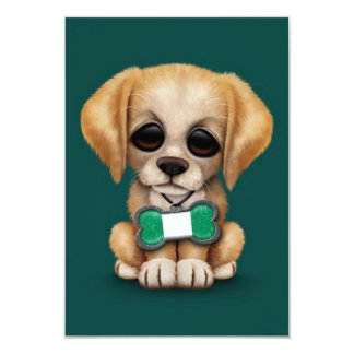 Cute Puppy with Nigerian Flag Dog Tag, teal Invites