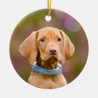 Cute puppyeyed Hungarian Vizsla Dog Puppy Photo , Christmas Ornament