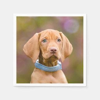 Cute puppyeyed Hungarian Vizsla Dog Puppy Photo /. Disposable Serviette