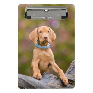 Cute puppyeyed Hungarian Vizsla Dog Puppy Photo // Mini Clipboard