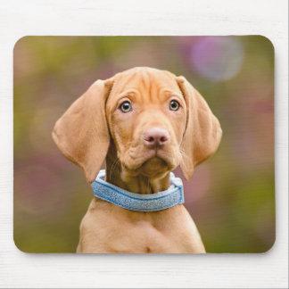 Cute puppyeyed Hungarian Vizsla Dog Puppy Photo : Mouse Mat