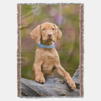 Cute puppyeyed Hungarian Vizsla Dog Puppy Photo Throw Blanket