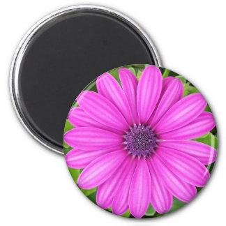 Cute Purple Flower Magnet