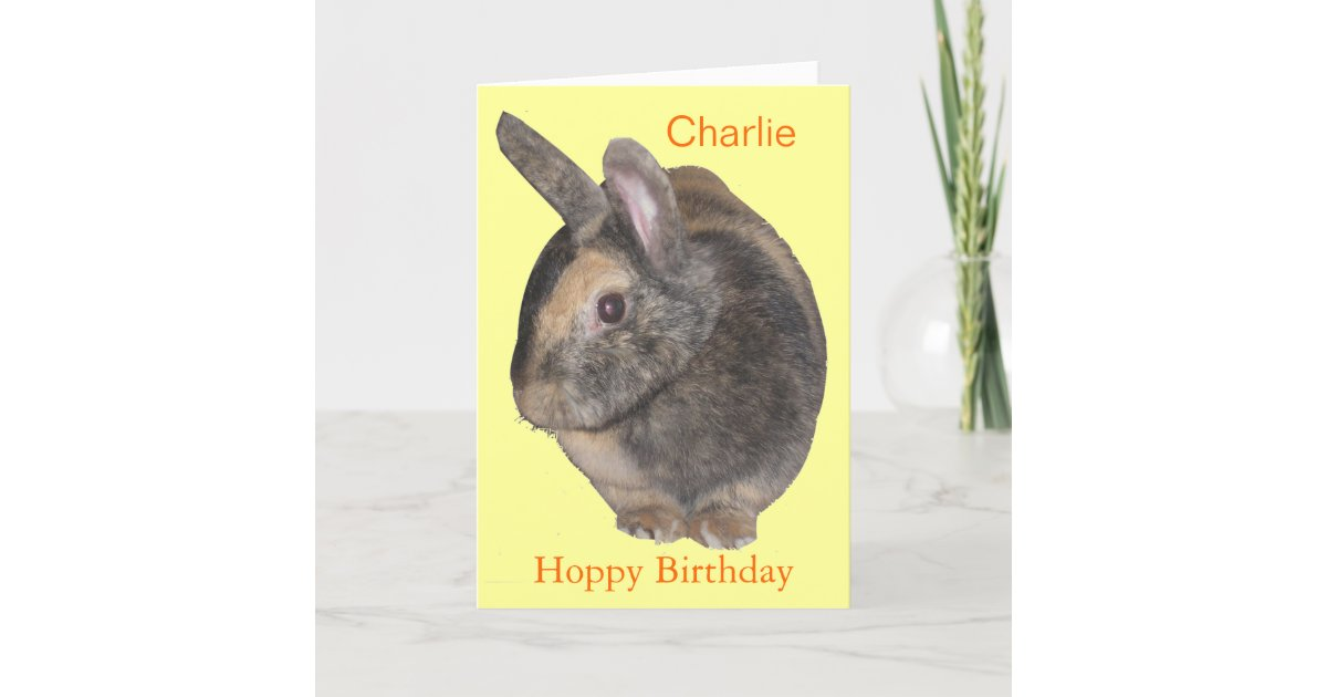 Cute Rabbit Birthday Card