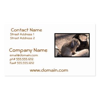 Cute Rabbit Business Card Templates