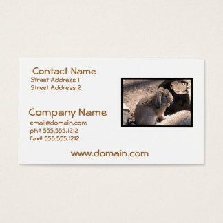 Cute Rabbit Business Card