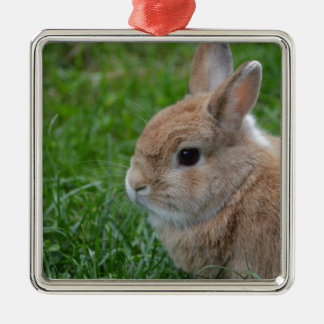 Cute Rabbit Christmas Ornament