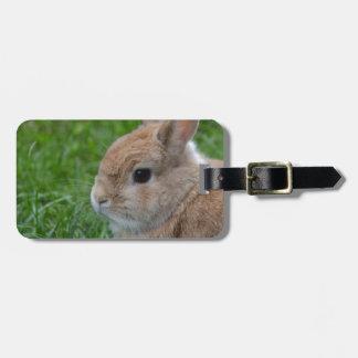 Cute Rabbit Luggage Tag